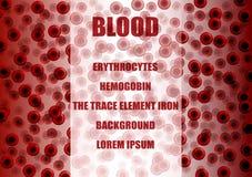 Κόκκινα κύτταρα αίματος, ερυθροκύτταρα ελεύθερη απεικόνιση δικαιώματος