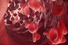 Κόκκινα κύτταρα αίματος στη φλέβα ή την αρτηρία, ροή μέσα μέσα σε έναν οργανισμό διαβίωσης, τρισδιάστατη απόδοση ελεύθερη απεικόνιση δικαιώματος