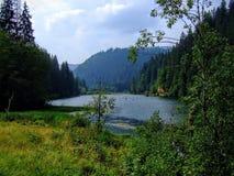 Κόκκινα λίμνη και δάσος γύρω Στοκ φωτογραφία με δικαίωμα ελεύθερης χρήσης