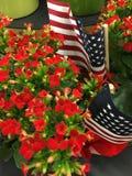 Κόκκινα λουλούδια, αμερικανική σημαία Στοκ Εικόνες
