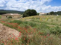Κόκκινα λουλούδια παπαρουνών και παλαιό σπίτι της Προβηγκίας στο αγροτικό τοπίο της νότιας Γαλλίας Στοκ Φωτογραφία
