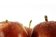Κόκκινα μήλα με την κινηματογράφηση σε πρώτο πλάνο σταγονίδιων νερού που βλασταίνεται στο λευκό με το διάστημα αντιγράφων για το  στοκ εικόνες