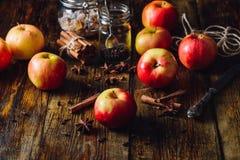 Κόκκινα μήλα με τα διαφορετικά καρυκεύματα Στοκ φωτογραφία με δικαίωμα ελεύθερης χρήσης