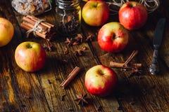 Κόκκινα μήλα με τα διαφορετικά καρυκεύματα Στοκ Εικόνα