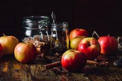 Κόκκινα μήλα με τα καρυκεύματα για Grog Στοκ εικόνα με δικαίωμα ελεύθερης χρήσης