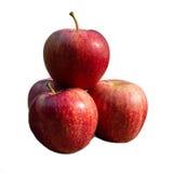 Κόκκινα μήλα σε μια άσπρη ανασκόπηση Στοκ Φωτογραφία