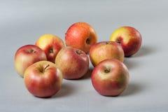 Κόκκινα μήλα στο γκρίζο υπόβαθρο Στοκ Εικόνα