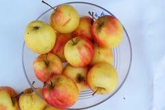 Κόκκινα μήλα φρέσκα στο άσπρο υπόβαθρο Στοκ Εικόνες