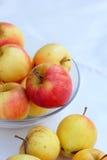 Κόκκινα μήλα φρέσκα στο άσπρο υπόβαθρο Στοκ φωτογραφία με δικαίωμα ελεύθερης χρήσης
