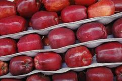 Κόκκινα μήλα Στοκ Εικόνες