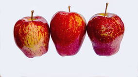 Κόκκινα μήλα Στοκ Εικόνα