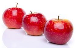 Κόκκινα μήλα ARIANE Στοκ εικόνες με δικαίωμα ελεύθερης χρήσης