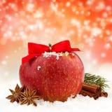 Κόκκινα μήλο και καρυκεύματα Στοκ εικόνες με δικαίωμα ελεύθερης χρήσης