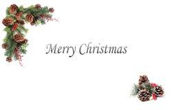 Κόκκινα μούρα κώνων πεύκων ετικεττών υποβάθρου Χριστουγέννων και επιβιβασμένος από την εορταστική γιρλάντα Στοκ Εικόνες