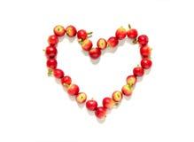Κόκκινα μούρα φασολιών καφέ στη μορφή καρδιών Στοκ Φωτογραφίες
