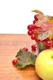 Κόκκινα μούρα viburnum στο γυαλί και ένα μήλο Στοκ εικόνες με δικαίωμα ελεύθερης χρήσης