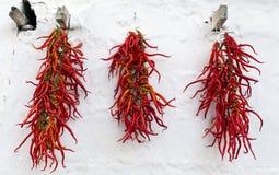 Κόκκινα ξηρά πιπέρια που κρεμούν στον τοίχο Στοκ Εικόνες