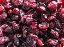Κόκκινα ξηρά τα βακκίνια Στοκ φωτογραφία με δικαίωμα ελεύθερης χρήσης