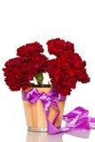 Λουλούδια γαρίφαλων στοκ φωτογραφίες με δικαίωμα ελεύθερης χρήσης