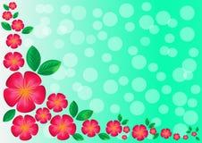 Κόκκινα λουλούδια και φύλλα στο πράσινο υπόβαθρο Στοκ Φωτογραφία