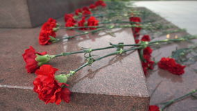Κόκκινα λουλούδια σε μια ταφόπετρα στοκ φωτογραφία με δικαίωμα ελεύθερης χρήσης