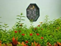 Κόκκινα λουλούδια στο πάρκο Στοκ φωτογραφίες με δικαίωμα ελεύθερης χρήσης