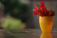 Κόκκινα) λουλούδια Plumeria (στο κίτρινο βάζο σε έναν πίνακα Στοκ Εικόνες