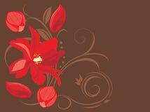 Κόκκινα λουλούδι και πέταλα στο διακοσμητικό καφετί υπόβαθρο Στοκ Φωτογραφίες