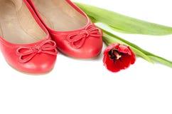 Κόκκινα παπούτσια μπαλέτου που απομονώνονται άσπρο #1 Στοκ Εικόνες