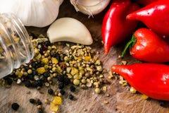Κόκκινα πιπέρια και σκόρδο Στοκ φωτογραφίες με δικαίωμα ελεύθερης χρήσης