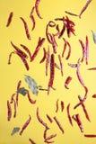 Κόκκινα πιπέρια και φύλλα κόλπων Στοκ Φωτογραφίες