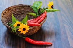 Κόκκινα πιπέρια με τα φύλλα και τις κίτρινες μαργαρίτες Στοκ Φωτογραφία