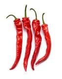 Κόκκινα πιπέρια τσίλι Στοκ εικόνα με δικαίωμα ελεύθερης χρήσης