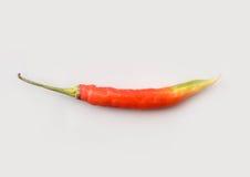 κόκκινα πιπέρια τσίλι που απομονώνονται στο άσπρο υπόβαθρο Στοκ Φωτογραφίες