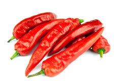 Κόκκινα πιπέρια τσίλι στο άσπρο υπόβαθρο Στοκ Εικόνες