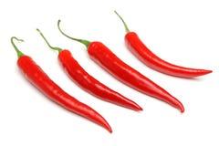 Κόκκινα πιπέρια τσίλι Στοκ Εικόνες