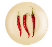 Κόκκινα πιπέρια Στοκ Εικόνες