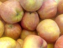 Κόκκινα πραγματικά μήλα Στοκ Φωτογραφίες