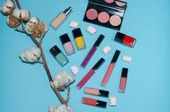 Κόκκινα, ρόδινα και μπλε κραγιόν Παλέτες ρουζ Λουλούδι βαμβακιού και στιλβωτική ουσία καρφιών Αποτελέστε τα προϊόντα ομορφιάς στο Στοκ εικόνα με δικαίωμα ελεύθερης χρήσης