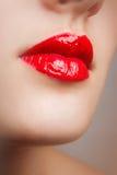 Κόκκινα στιλπνά θηλυκά χείλια Στοκ Εικόνα