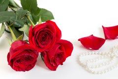κόκκινα τριαντάφυλλα τρία Στοκ Φωτογραφίες