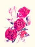 Κόκκινα τριαντάφυλλα - ζωγραφική watercolor στο μπεζ υπόβαθρο Στοκ εικόνες με δικαίωμα ελεύθερης χρήσης