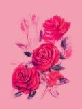Κόκκινα τριαντάφυλλα - ζωγραφική watercolor στο ρόδινο υπόβαθρο Στοκ εικόνες με δικαίωμα ελεύθερης χρήσης