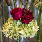 Κόκκινα τριαντάφυλλα και guelder τριαντάφυλλα στη ρύθμιση Στοκ Εικόνες