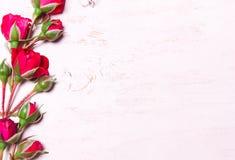 Κόκκινα τριαντάφυλλα σε ένα άσπρο ξύλινο υπόβαθρο Η σύνθεση του flowe Στοκ φωτογραφία με δικαίωμα ελεύθερης χρήσης