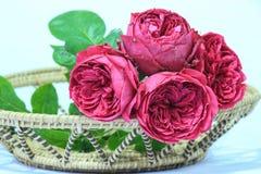Κόκκινα τριαντάφυλλα στο καλάθι Στοκ εικόνες με δικαίωμα ελεύθερης χρήσης