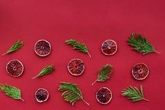 Κόκκινα τρόφιμα που τίθενται με το γκρέιπφρουτ για τη τοπ χλεύη άποψης επιλογών εστιατορίων επάνω Στοκ Εικόνες
