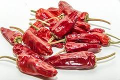 Κόκκινα τσίλι ` s σε ένα άσπρο υπόβαθρο Στοκ Εικόνες