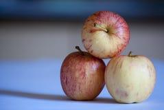 Κόκκινα υγιή φρέσκα προϊόντα μήλων στοκ εικόνα