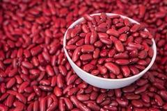 Κόκκινα φασόλια νεφρών σε ένα φλυτζάνι Στοκ Εικόνες